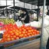 Evo zašto je paradajz izgubio ukus